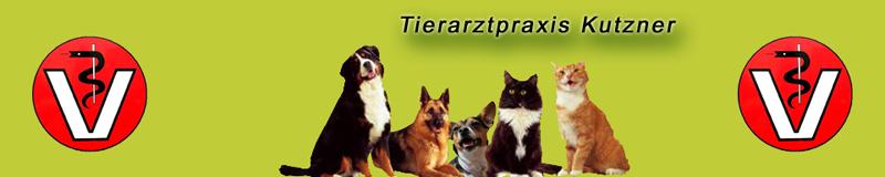 Tierarzt Kutzner